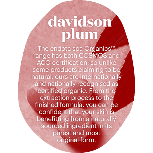 From source to skin: The healing power of Davidson Plum